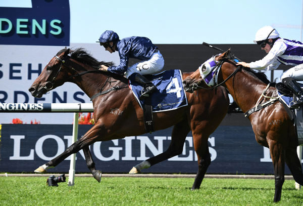 Yaletown wins the G2 Tulloch Stakes - image Steve Hart