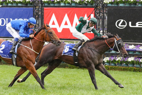 Exceedance scores a career defining win in the G1 Coolmore Stud Stakes