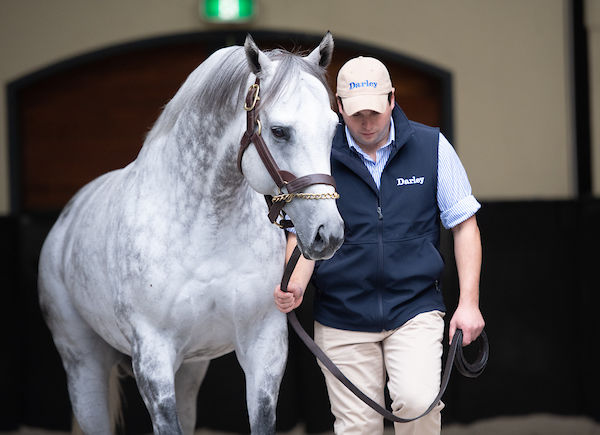 Frosted will stand at $44,000.