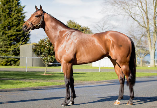 Heroic Valour is on the board with his first winner!