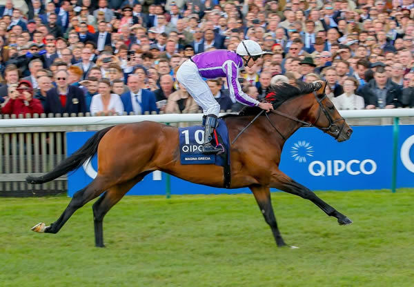 Magna Grecia - G1 winner at 2 and 3 by Invincible Spirit - Click for more info