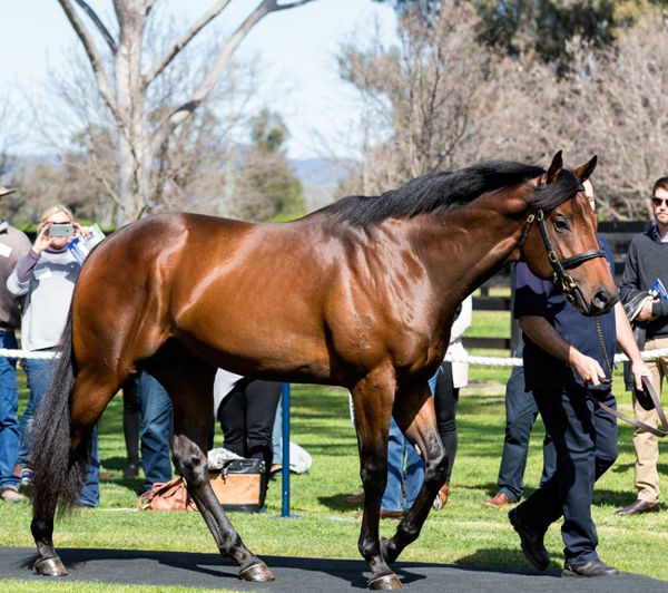 Pride of Dubai added a seventh winner to his tally on Monday.