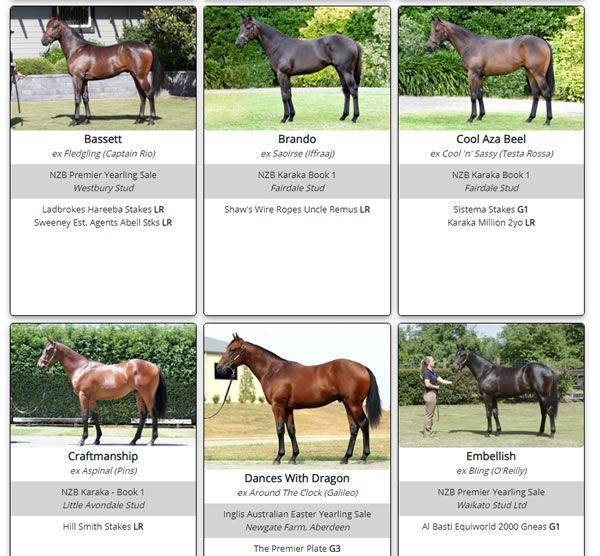 Click here to see a full gallery of Savabeel's SW progeny