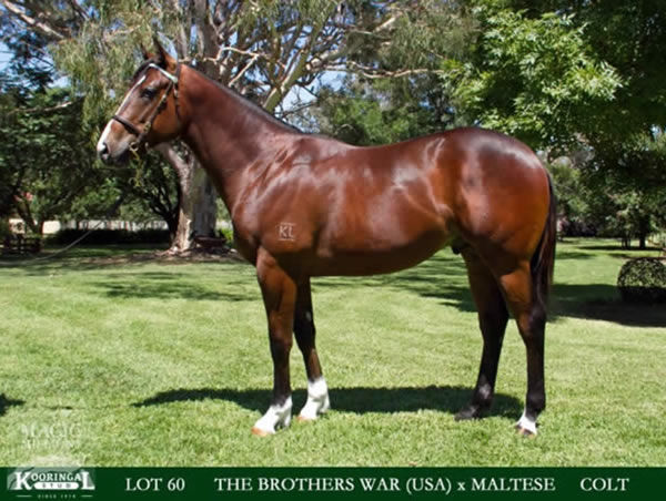 Ancestry as a yearling