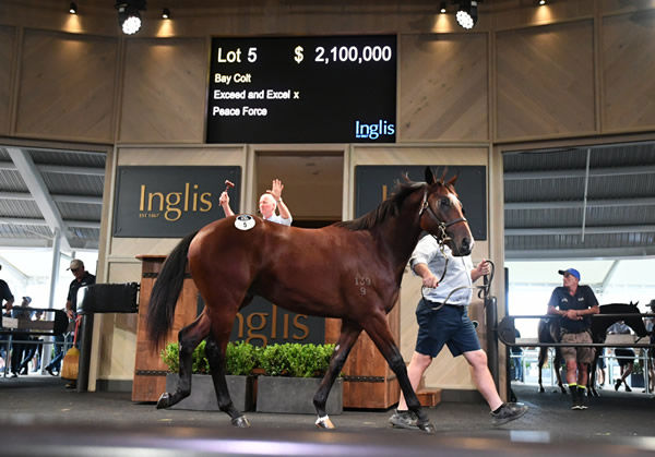 $2.1 million Exceed and Excel colt from Peace Force