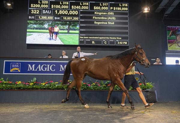 $1.8 million Kingman colt from Florentina.