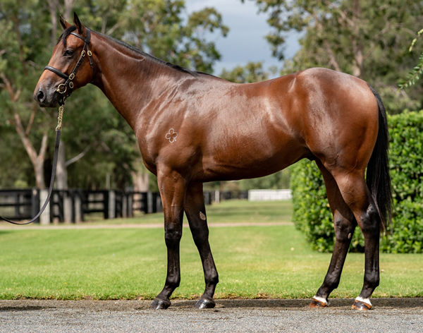Lot 105 sold for $500,000