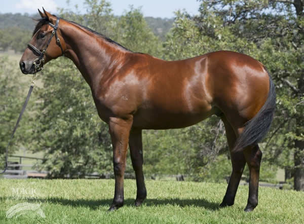 Deep Image as a yearling
