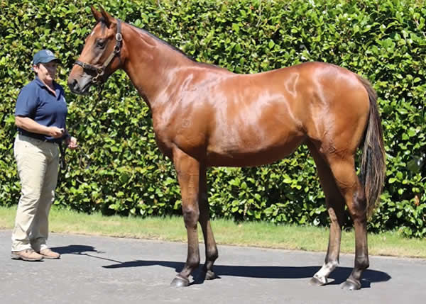 Lot 94 - click to see her page and parade.