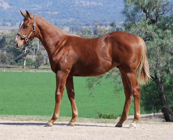 Lot 142 - click to see his page.