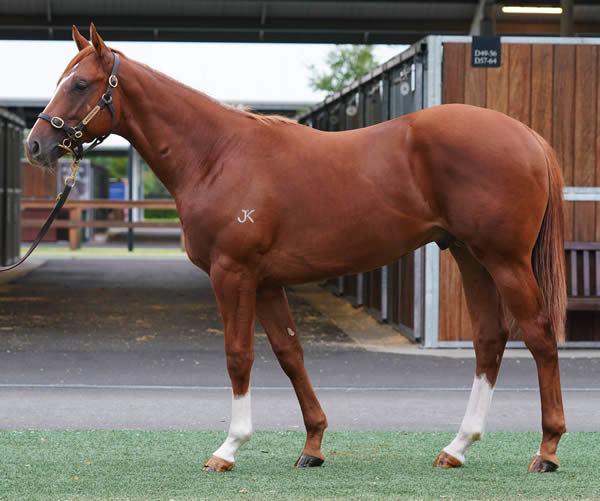 Lot 19 - click to see his page.