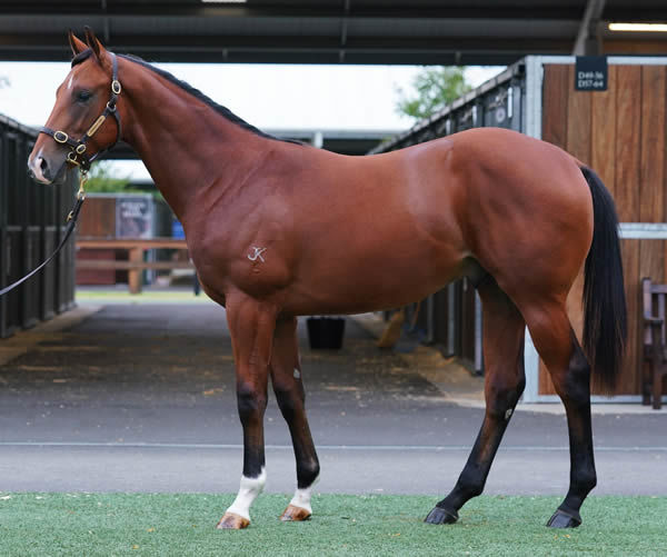 Lot 61 - click to see his page.