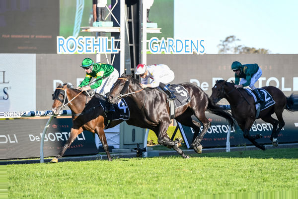 Ole Kirk edges out North Pacific to win the G1 Golden Rose - image Steve Hart