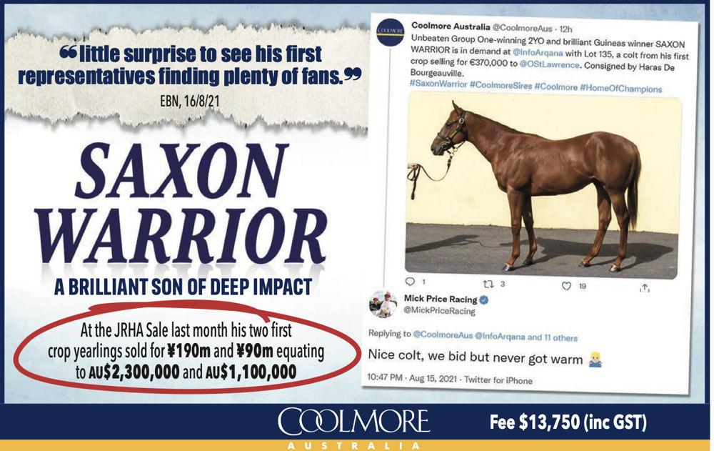 Saxon Warrior