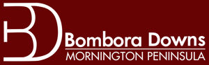 Bombora Downs