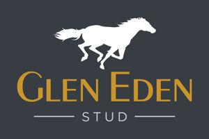 Glen Eden Stud