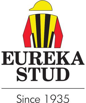 Eureka Stud